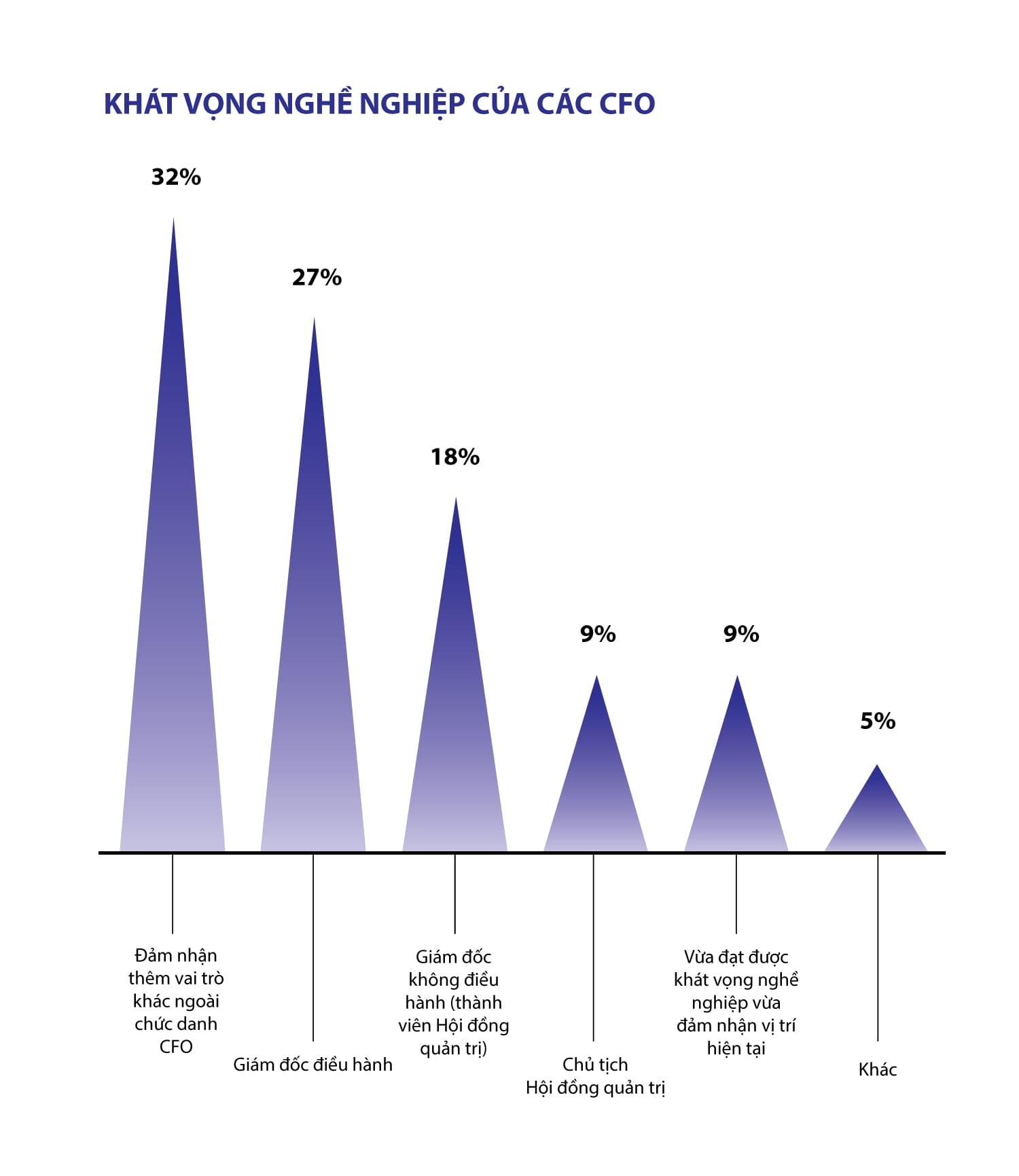 Giám đốc tài chính (CFO) tương lai: Tập trung vào vai trò chiến lược - ảnh 1